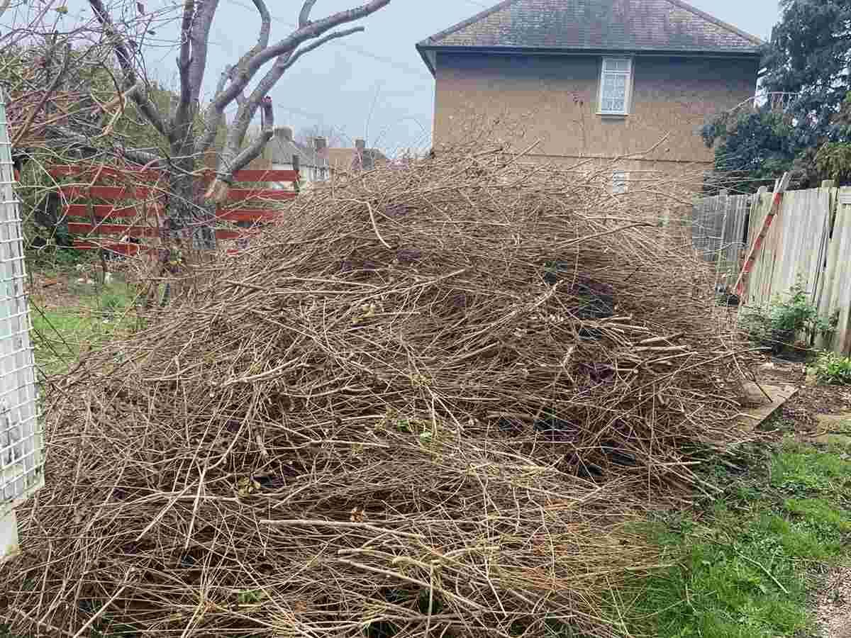 garden-waster-removal